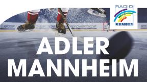 Radio Regenbogen Adler-Stream Logo